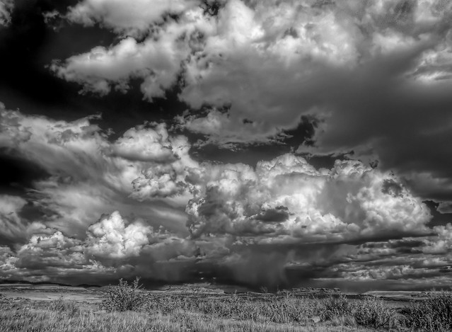 Laramie Valley Today II