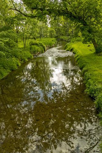 ohio water reflections landscapes greenery creeks canonphotography doylestownohio rogueshollow littlechippewariver