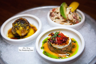 Crudo tasting - Ceviche Mixto, Salmon Brulee, Seared salmon with passion fruit & caviar | by thewanderingeater