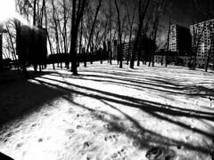 Griffintown Park Winter Shadows 3