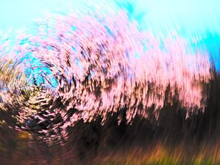 весенняя круговерть | by ara bo