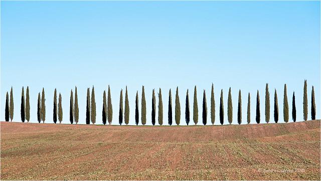 Tuscan Minimalism