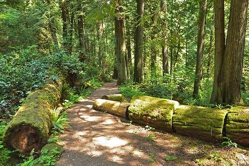 John Dean Park, Mount Newton, North Saanich, Victoria, Vancouver Island, British Columbia, Canada