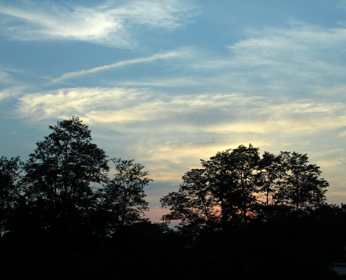 trees kentucky ky silhouettes sunsets richmond cr627 boonesborord lovestravelshop