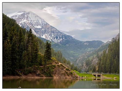 nature utah alpine 2015 americanforkcanyon