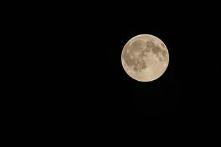 Full Moon July 2016 | by _dermatz