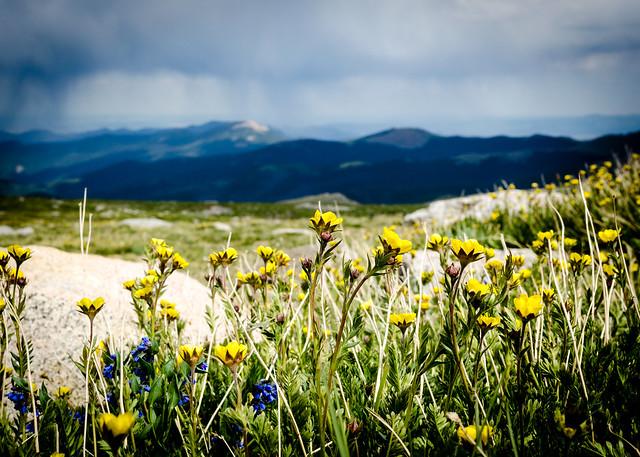 Denver - Mt Evans-11