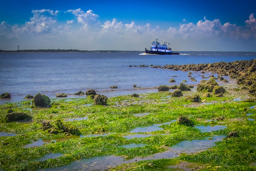 park blue sea green beach st river island rocks state florida fort north clean lettuce marys tugboat amelia algae campground pops hdr fernandina topaz clinch ulva