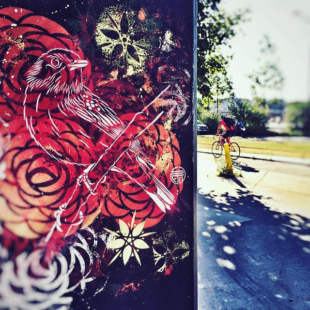 Urban bird #urban #street #streetart #streetarteverywhere #city #wall #bike #lavomatik #graffiti