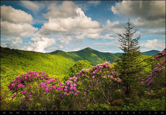 Asheville NC Blue Ridge Parkway Pinnacle