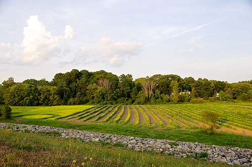 callahanstatepark farm framingham massachusetts usa