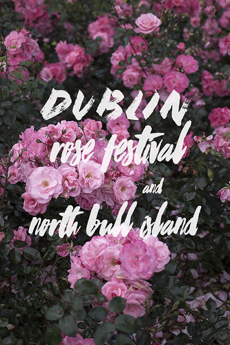 Rose Festival & North Bull Island | by The Art of Exploring