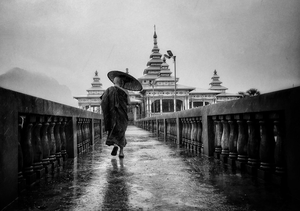 Under the monsoon rain II - NatGeo Your Shot Daily Dozen, Aug 19, 2016
