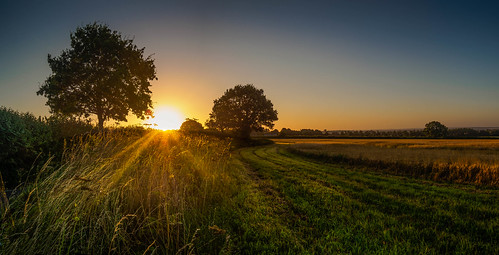 1232 2016 em5 em5mark2 em5mk2 em5markii flickr hampshire ibworth landscape lightroom lr6 lumix m43 mft microfourthirds olympus omd summer sunrise gmh