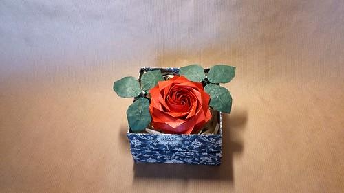Rose by Tomasz Krawczyk | by Tomasz Krawczyk Origami