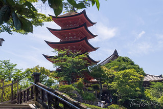 宮島 (Miyajima) | by Tony Tani