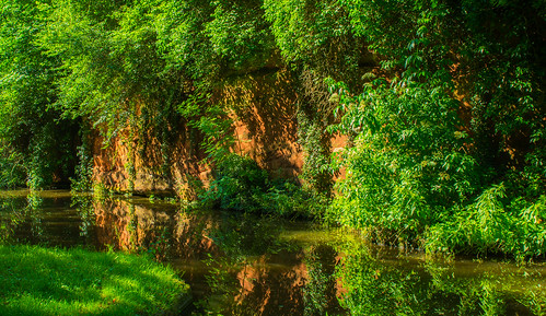 uk summer england plant tree green water reflections landscape canal nikon sandstone outdoor peaceful shade serene westmidlands towpath waterways kinver stourton 2016 staffordshireworcestershirecanal dappledshade southstaffordshire d7100 tamron2470f28vc
