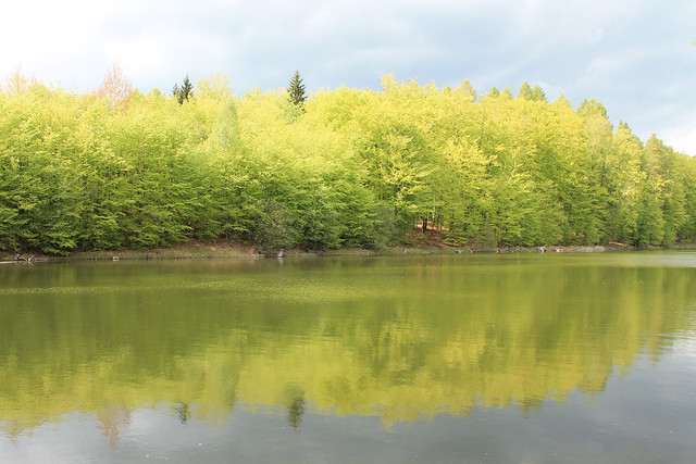 Martwe Lake, Warmia, Poland