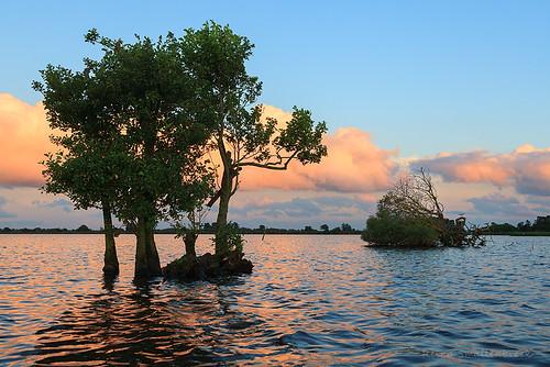 leekstermeer lake meer groningen drenthe canonnederland lucht zonsondergang water sunset trees landschap landscape netherlands onlanden clouds wolken sky