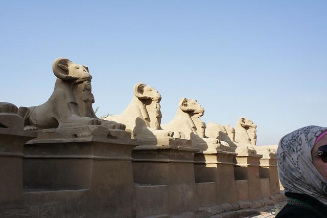 The avenue of Ram sphinxes in Egypt Karnak temple