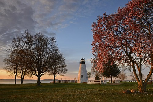 landscape nature tree lighthouse nikon d600 clouds sunrise concordpointlighthouse concordpoint concord