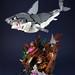 Sharks Treasure-3 by LEGO 7