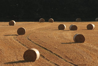 Haybales | by Henry Hemming
