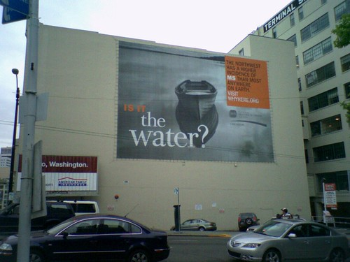 Is it the water?