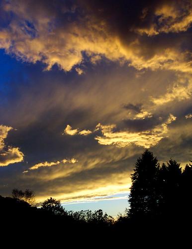blue trees light sunset shadow sky cloud color tree clouds dark landscape gold sundown wind magic cumulus sillouette cirrus dryflydrifting