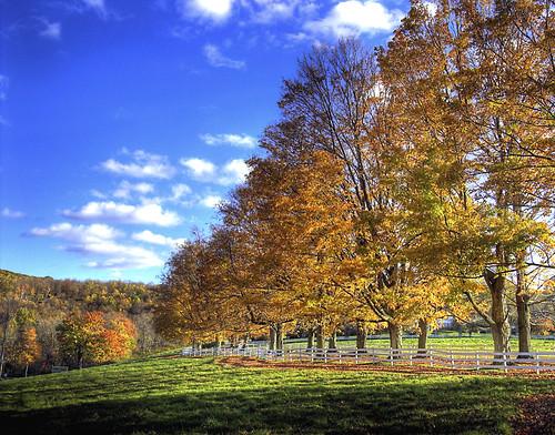 fall colors d50 geotagged nikon ct shamik hdr autmn lakewaramaug photomatix inanutshell tthdr geo:lat=41700602 geo:lon=73364639 dudewheretheheckareyou