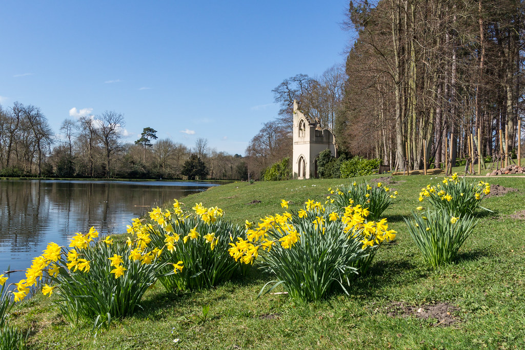 Spring at the Ruined Abbey_1