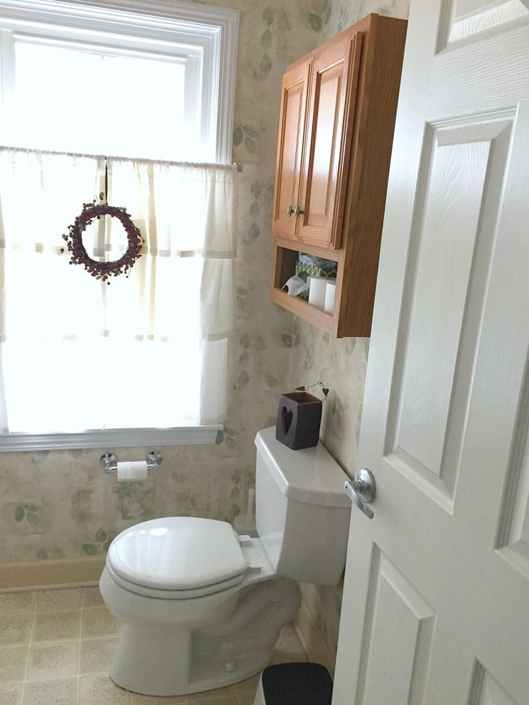 toilet area before