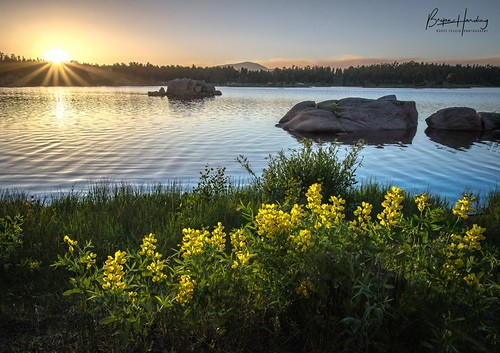 redfeatherlakes dowdylake badgercreekfire reflection lake wildflowers sunset rockymountains coloradophotography lakephoto summer larimercounty mountainlake camping serenity peace
