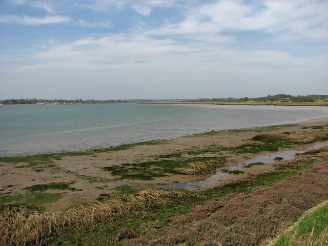 The River Deben at Shottisham