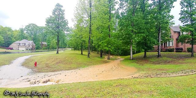Flash Flood | Olive Branch, Mississippi