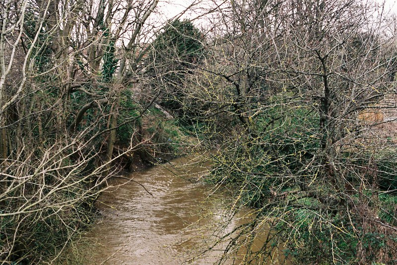The Frome, Eastville