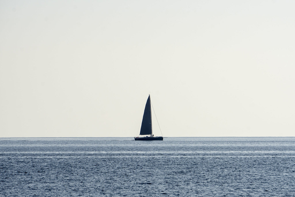 Sailboat out in the ocean sailing