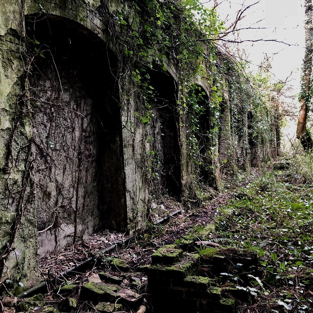 Abandoned mansion #urbex #urbexnation #explore #explorer