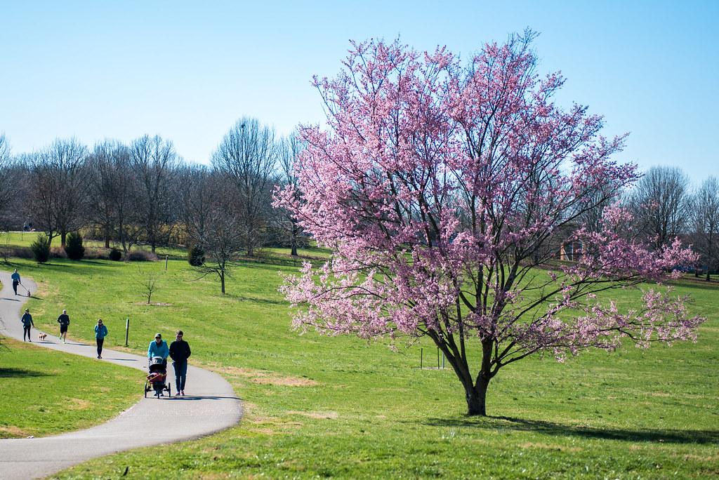 Arboretum State Botanical Garden of Kentucky