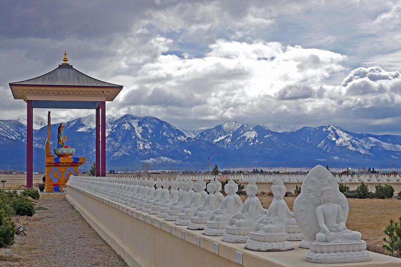 1000 Buddhas (80)