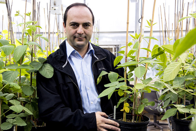 Soybean Breeder Leandro Mozzoni