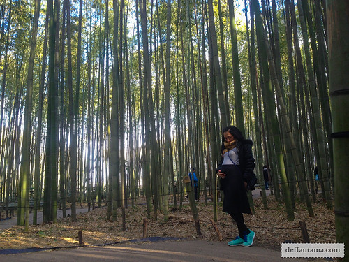 9 Hari Babymoon ke Jepang - The Bamboo Forest Trail 2 | by deffa_utama
