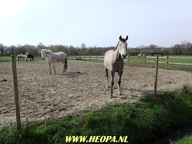 2018-04-17  Groningen -   Rolde 42 Km  (49)