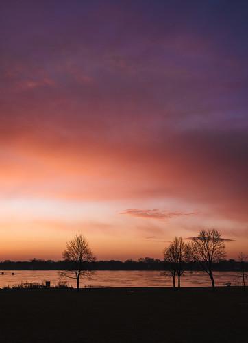 horizon madison sunrise winter dawn lake cold morning daybreak silhouette trees brittinghampark clouds wisconsin lakemonona sky park freezing mononabay frozen ice
