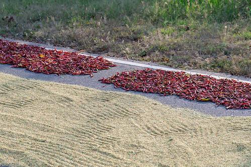 Chili und Hirse | by seghal1
