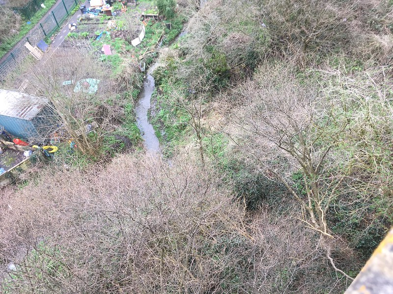 Coombe Brook from the Royate Hill Nature Reserve viaduct