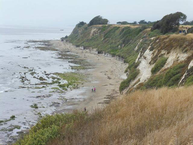 P1040158 Ellwood mesa bluff to beach