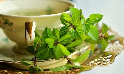 čaj od koprive za mršavljenje Najveći problemi