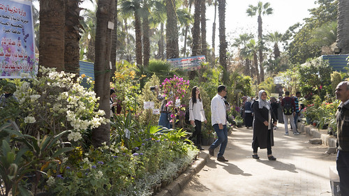 The visitors of Egypt's Spring Flowers Fair | by Kodak Agfa