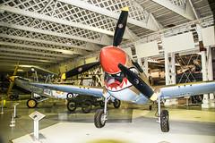 Curtiss Kittyhawk IV